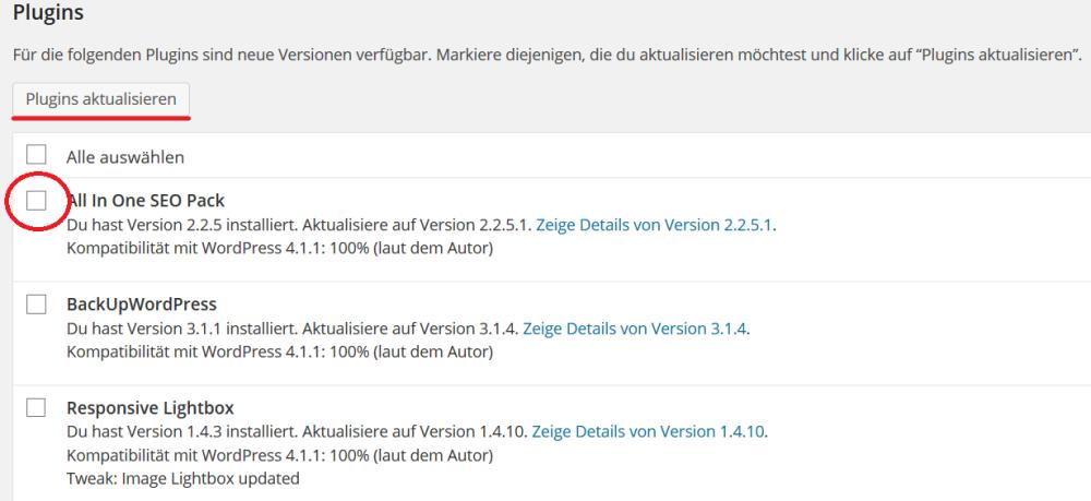 Wordpress Plugins aktualisieren