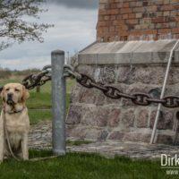 Angeleinter Hund am Flügger Leuchtturm