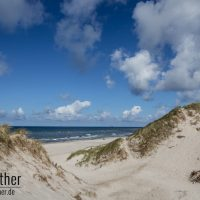 Stranddünen auf dem Holmsland Klit