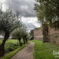 Burg Friedestrom - Stadtmauer Zons